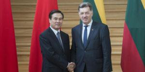 Premier Litwy Algirdas Butkevicius w trakcie spotkania z chińskim radnym Yang Jingiem w Wilnie.