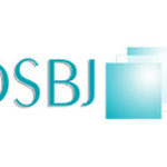 DSBJ Group