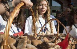 Święto Toruńskiego Piernika za nami
