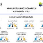 Infografika - Koniunktura gospodarcza w Polsce w październiku 2018 r.