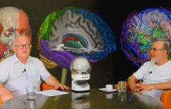 Rozmowy na czasie - Żywot mózgu